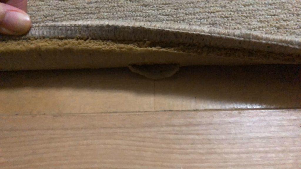 劣化した絨毯